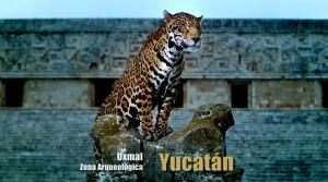 Estrellas del Bicentenario YUCATAN Dirigido Por Diego Pernía