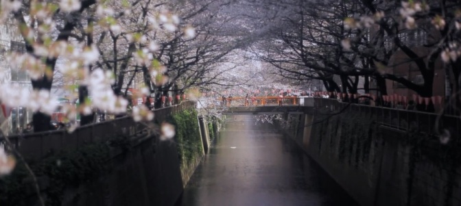 """""""Last Curtain"""":   A Cinematic Short Film In Tokyo, Japan By Hideki Inoue (2010)"""