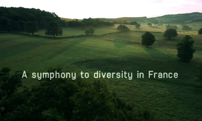 """Tales Of Nature"": A Cinematic Short Film Trailer For ""La France Sauvage"" TV Series (2012)"