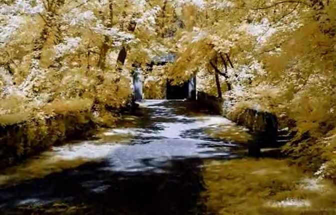"""""""The Hidden World"""": A Cinematic Time-Lapse Short Film Directed By Bruce W. Berry Jr. (2014)"""
