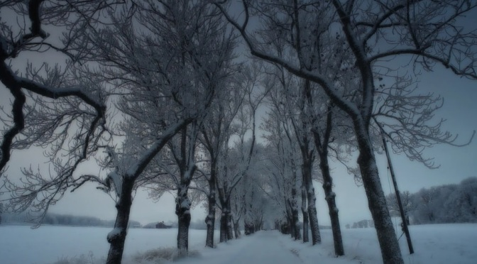 """Two Fifty Three Kelvin"": A Cinematic Short Film Of Winter In Sweden By Bart van der Gaag (2011)"