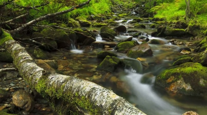 """""""The Water"""": A Cinematic Time-Lapse Short Film In Norway Directed By Terje Sørgjerd (2011)"""