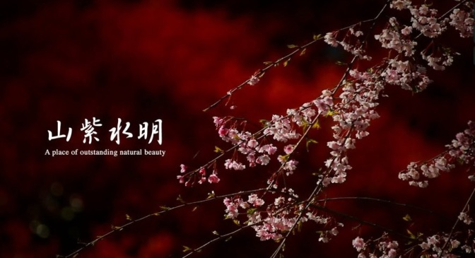 """Scenic Beauty"": A Cinematic Short Film Of Spring In Japan Directed By Norichika Fueta (2010)"