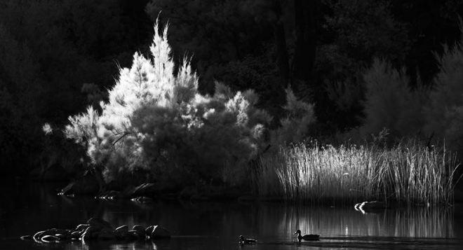 Voyage Cinematic Infrared Short Film in Australia Directed by Glen Ryan and James van der Moezel 2015