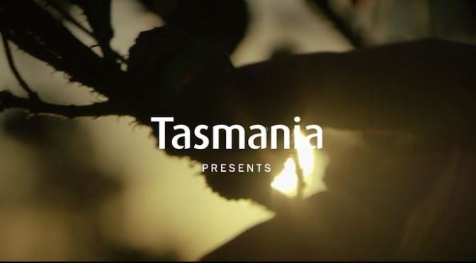 """Three Capes"": A Cinematic Poem Short Film Promo In Tasmania Directed By Justin McMillan (2015)"