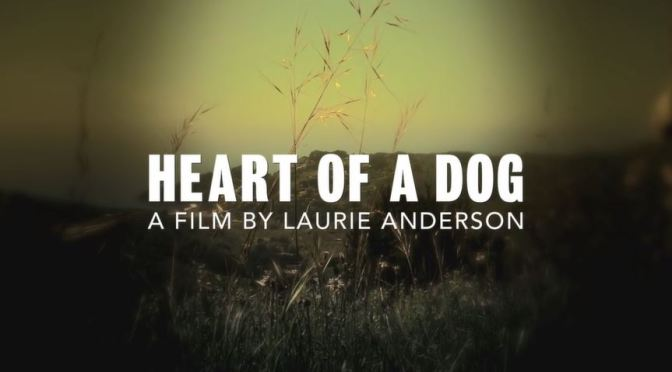 """Heart Of A Dog"": A Cinematic Poem Short Film Trailer Directed By Laurie Anderson (2015)"