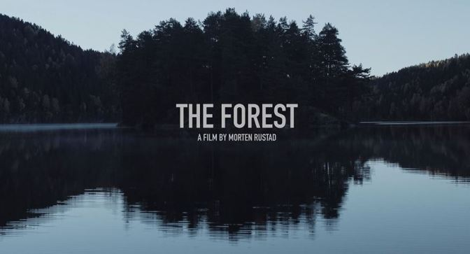 """The Forest-A Journey Through The Forgotten Norway"": A Cinematic Poem Short Film Directed By Morten Rustad (2016)"