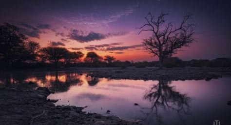 Undisturbed Places Cinematic Time-Lapse Short Film in Namibia and Botswana Directed by Maciej Tomkow
