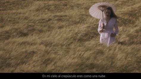 Videoarte Cinematic Poem Fashion Short Film Featuring Pablo Neruda Directed by Guillermo Avis in 2016