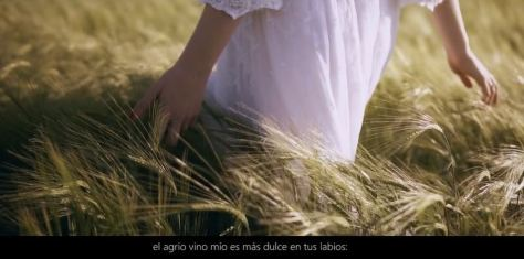 Videoarte Cinematic Poem Fashion Short Film Featuring Pablo Neruda Directed by Guillermo Avis