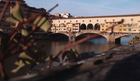 Dandelion Cinematic Poem Short Film Directed by Aurora Ovan 2016