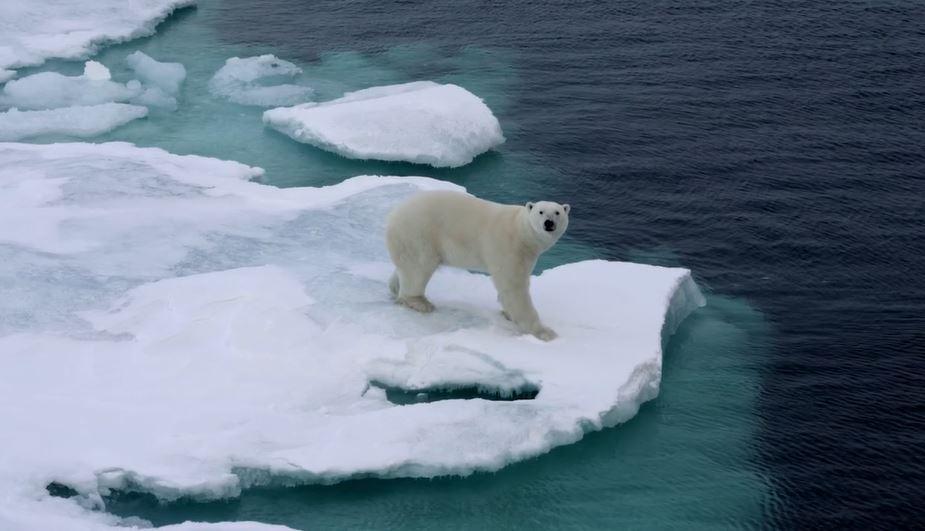 arctic-cinematic-poem-short-film-of-inuits-directed-by-tim-kellner-2016