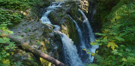 olympic-np-cinematic-nature-short-film-in-washington-state-directed-by-rudy-wilms