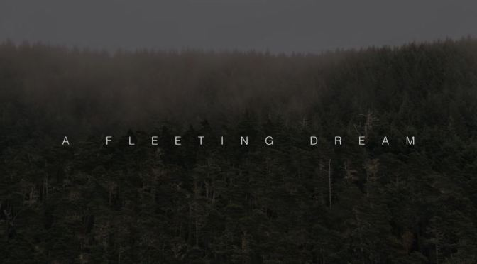 """A Fleeting Dream"": A Cinematic Aerial Short Film In Oregon Directed By Jay Worsley (2016)"