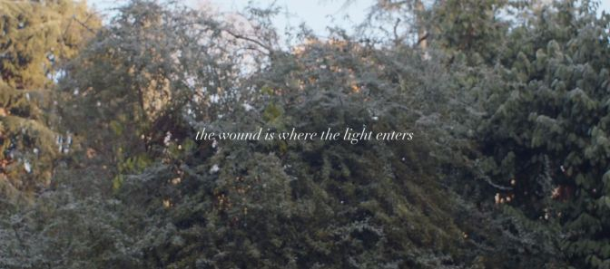 """The Wound Is Where The Light Enters"": A Cinematic Poem Short Film Directed By Somayeh Jafari (2018)"