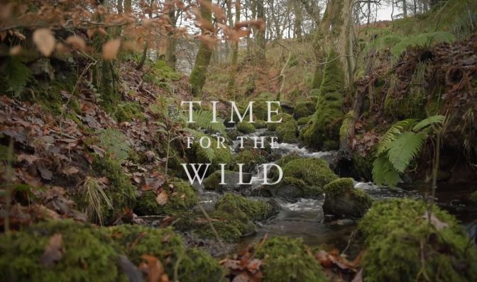 """Time For The Wild"": A Cinematic Poem Short Film Documentary Directed By Andrew O'Donnell (2019)"