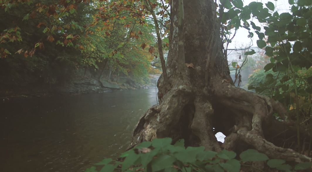 An Ode To The Land Of Little Rivers Cinematic Poem Short Film Directed By Peter Crosby (2019)