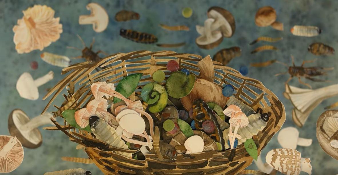 The Mushroom Hunters Cinematic Poem Short Film Written by Neil Gaiman Directed by Caroline Rudge 2019